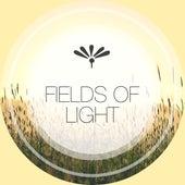 Fields of Light von Best Relaxing SPA Music