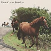 Here Comes Freedom by Chillout Lounge