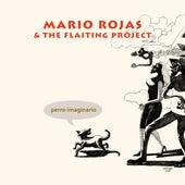 Perro Imaginario de Mario Rojas