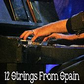 12 Strings from Spain von Chillout Lounge