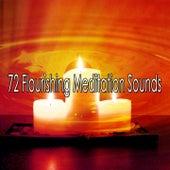 72 Flourishing Meditation Sounds de Yoga Music