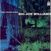 Piney Wood Blues de Big Joe Williams