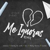 Me Ignoras Remix by Linowz