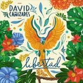Libertad de David Cañizares