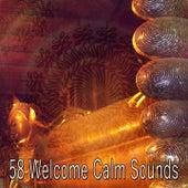 58 Welcome Calm Sounds von Entspannungsmusik