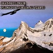 Plumas de Cóndor al Viento de Skay Beilinson