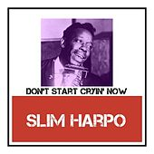 Don't Start Cryin' Now by Slim Harpo