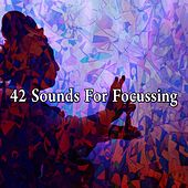 42 Sounds for Focussing von Ambiente