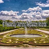 42 Pleasantly Calming Meditation Sounds by Classical Study Music (1)
