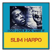I Got Love If You Want It de Slim Harpo