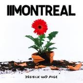 Dreieck und Auge von Montreal