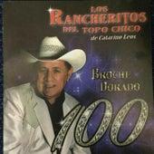 Broche Dorado by Los Rancheritos Del Topo Chico