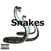Snakes by Incognito