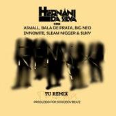 Tu (Remix) [feat. Bala de Prata, Sleam Nigger, A Small, Suky, Dynomite & Big Neo] de Hernani