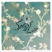 Spring of Life by Eric Chiryoku