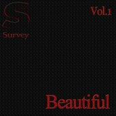 Beautiful, Vol.1 von Various
