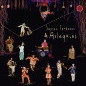 Sopros, Tambores & Arlequins by Marcela Zanette