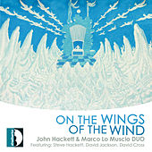 On the Wings of the Wind de Various Artists