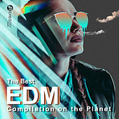 The Best EDM Compilation on the Planet: Electro House, Festival Music, Workout EDM by Various Artists