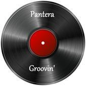 Groovin' de Pantera