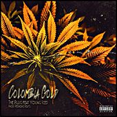 Colômbia Gold by TPlug