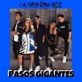 Pasos Gigantes by Camerino 401