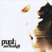 Sex Animal by Push