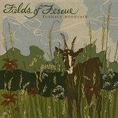 Fields of Fescue by Furnace Mountain
