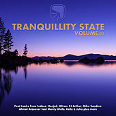 Tranquillity State - Vol 02 - EP by Various Artists