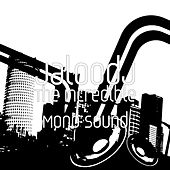 The Incredible Mono Sound van JaloodJ