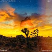 Missing You (feat. Abby) [Suprafive Remix] de Anthony Keyrouz