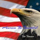 America the Beautiful de Tom Tomoser