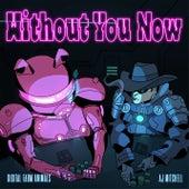 Without You Now (feat. AJ Mitchell) de Digital Farm Animals