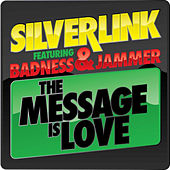 The Message is Love de Silverlink