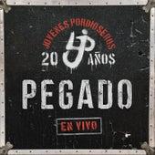 Pegado (En Vivo) - Single de Jóvenes Pordioseros