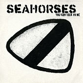 You Can Talk To Me by The Seahorses