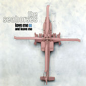 Love Me And Leave Me by The Seahorses