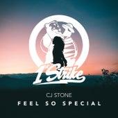 Feel So Special von CJ Stone