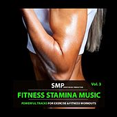 Fitness Stamina Music, Vol. 3 de Various Artists