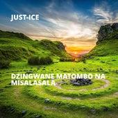 Dzingwane Matombo Na Misalasala de Just-Ice