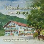 Wirtshausmusi beim Hagn - Volksmusik aus Oberbayern by Various Artists