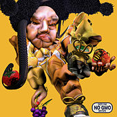 NO GMO Mixtape de Dizzy Fae
