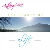 The Beauty of Life de Anthony Cisco