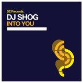 Into You von DJ Shog