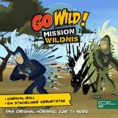 Karakal-Ball / Ein stacheliger Geburtstag (Das Original-Hörspiel zur TV-Serie) von Go Wild! - Mission Wildnis