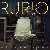 Pájaro Azul by Rubio