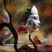Black Day (Adam Beyer Remix) by Monolink