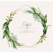 Tiefe Harmonie: Entspannende Musik zur Beruhigung de Chill Out