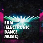 Edm (Electronic Dance Music) de Various Artists