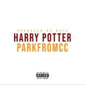 Harry Potter de ParkfromCC